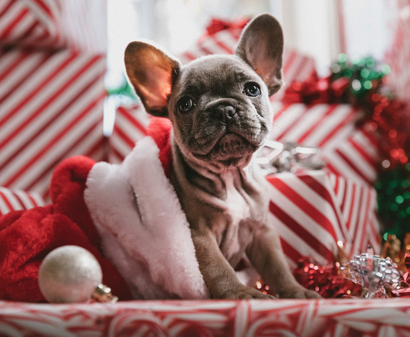 7 Practical Tips on How to Stay Sane This Holiday Season