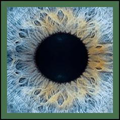 Eyeglasses Eye Exams 37 33 82nd St Jackson Heights Nycohen S